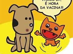 Vacinação_Bragança