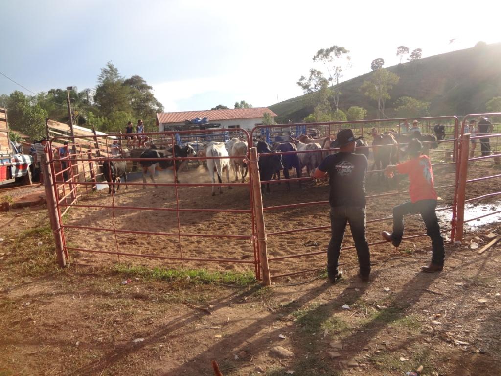 Clandestino_Rodeio_Pousoalegre