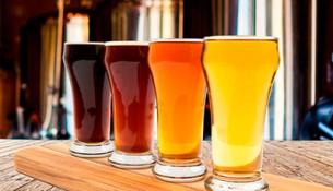site--festival-da-cerveja