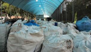 dia do campo limpo (2)