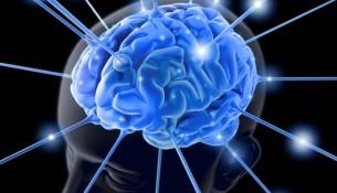 neurolinguistica