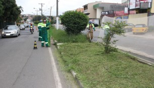 site--Limpeza-e-Corte-de-Mato-Avenida-dos-Imigrantes-(2)