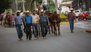 Foto: Arquivo ORSM - Desfile Carro de Boi 2017