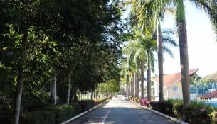 Paisagem-Parque-de-Eventos-20-07-2020-4