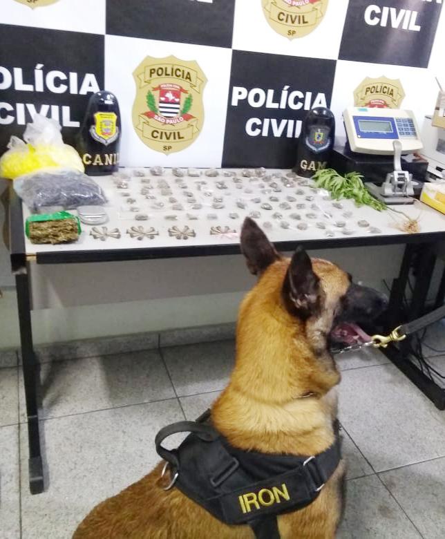 Guarda Civil Municipal atua na prisão de suspeito por tráfico de drogas