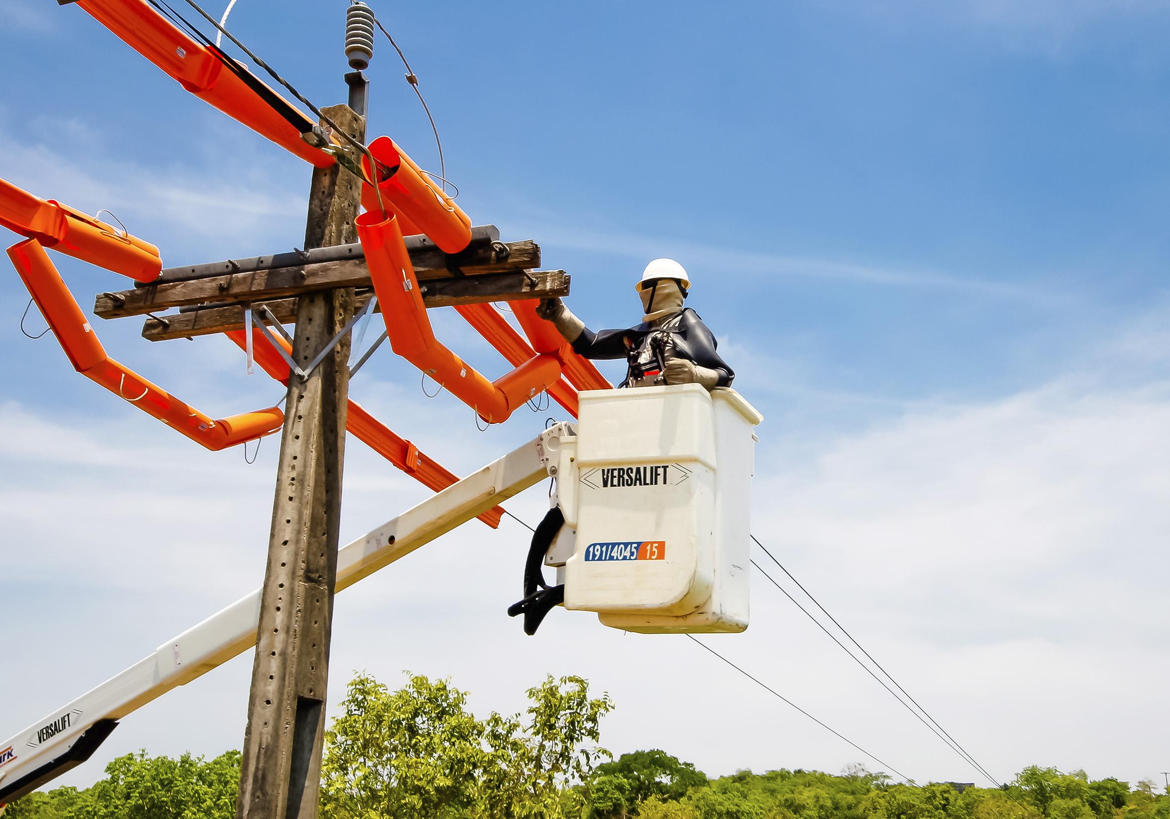 Em mais um ano, serviços prestados pela Energisa Sul-Sudeste foram bem avaliados pelos clientes
